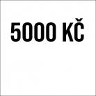 Příspěvek 5000Kč