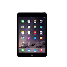 iPad mini (1-3)