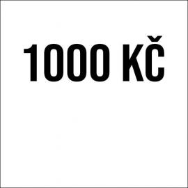 Příspěvek 1000Kč